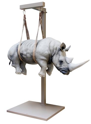 Il peso del tempo sospeso rhino XL