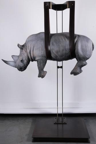 il peso del tempo sospeso rhino special edition