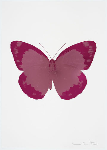 The Soul II - Loganberry Pink, Fuchsia Pink, Blind Impression, 2010